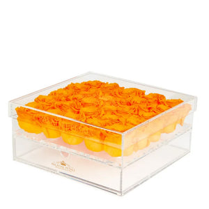 Hermes Orange Eternity Roses - Acrylic Box