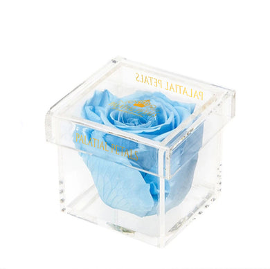 Baby Blue Eternity Rose - Petit Bisou