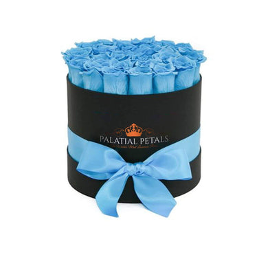 baby blue roses in a box