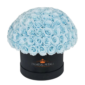 "Baby Blue Roses That Last A Year - Grande ""Crown"" Rose Box"