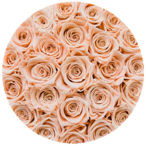 Champagne Roses That Last A Year - Classic Rose Box - Palatial Petals