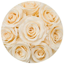 Champagne Roses That Last A Year - Petite Rose Box - Palatial Petals
