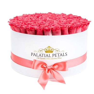 Coral Roses That Last A Year - Deluxe Rose Box - Palatial Petals