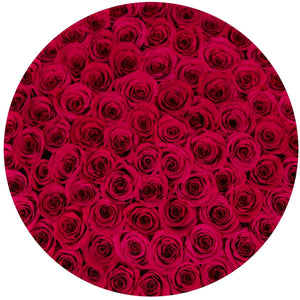 Flamingo Roses That Last A Year - Deluxe Rose Box - Palatial Petals