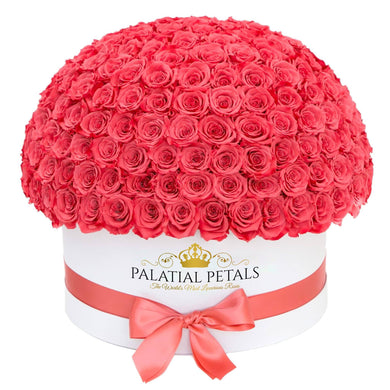 Flamingo Roses That Last A Year (Dome) - Deluxe Rose Box - Palatial Petals