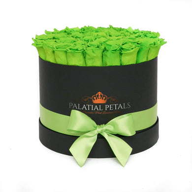 Green Roses That Last A Year - Large Rose Box - Palatial Petals