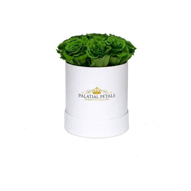 Green Roses That Last A Year - Petite Rose Box - Palatial Petals