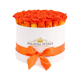Hermès Orange Roses That Last A Year - Large Rose Box - Palatial Petals