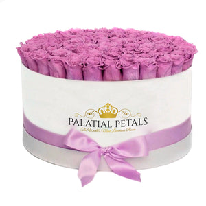 Lilac Roses That Last A Year - Deluxe Rose Box