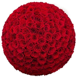 Red Roses That Last A Year (Dome) - Deluxe Rose Box - Palatial Petals