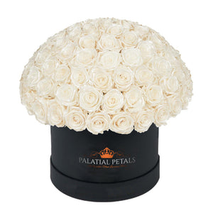 "Pearl Roses That Last A Year - Grande ""Crown"" Rose Box"