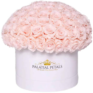 "Pink Roses That Last A Year - Large ""Dome 360"" Rose Box - Palatial Petals"