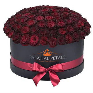 Pinot Noir Roses That Last A Year - Deluxe Rose Box - Palatial Petals