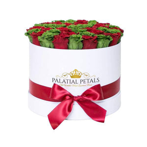 Red & Green Roses That Last A Year - Large Rose Box - Palatial Petals