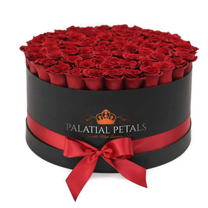 red preserved roses box