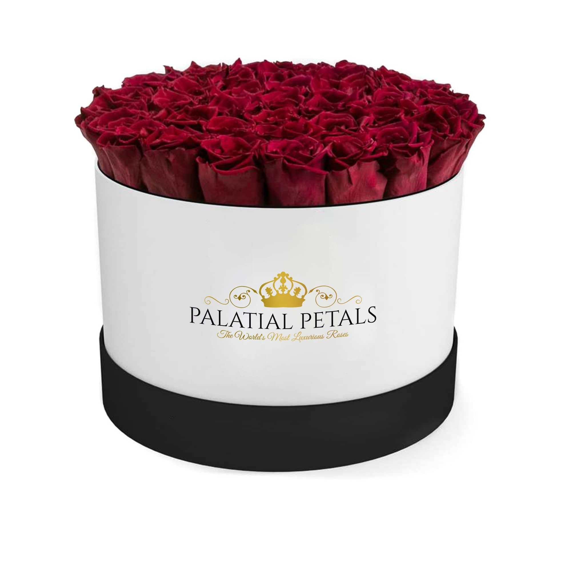 Burgundy Preserved Roses That Last A Year - Grande Rose Box - Palatial Petals