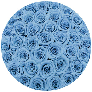 Roses That Last A Year - Baby Blue - Palatial Petals