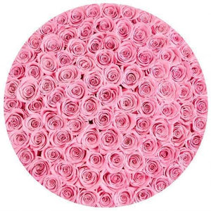 Roses That Last A Year - Barbie Pink - Palatial Petals