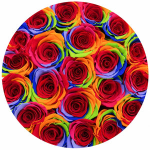 Rainbow Roses That Last A Year - Medium Rose Box - Palatial Petals