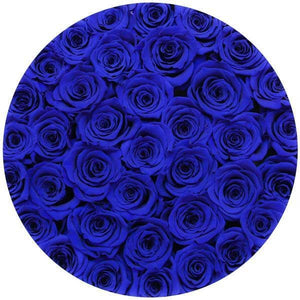 Royal Blue Preserved Roses That Last A Year - Large White Rose Box - Palatial Petals
