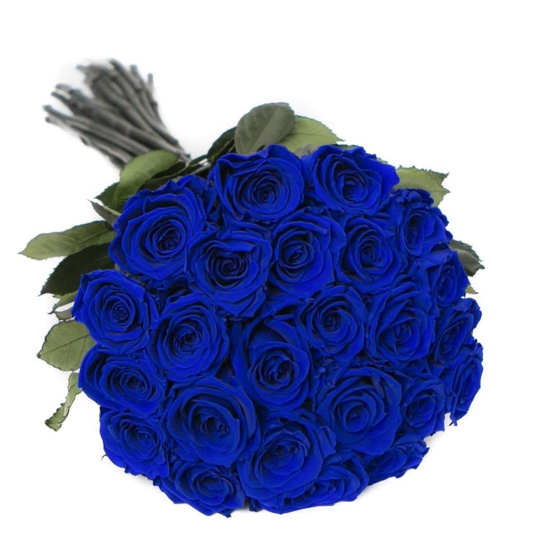 PALATIAL PETALS® Royal Blue - Long Stem Roses - Palatial Petals