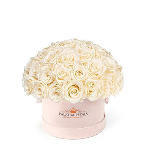 "Blush Roses That Last A Year - Classic Rose ""Crown"""