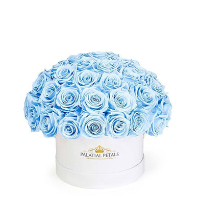 Baby Blue Roses That Last A Year - Classic