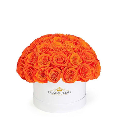 Hermès Orange Roses That Last A Year - Classic