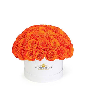 "Hermès Orange Roses That Last A Year - Classic ""Crown"""