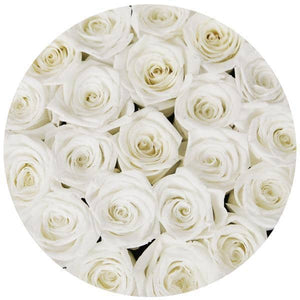 Snow White Preserved Roses That Last A Year - Medium Black Rose Box - Palatial Petals