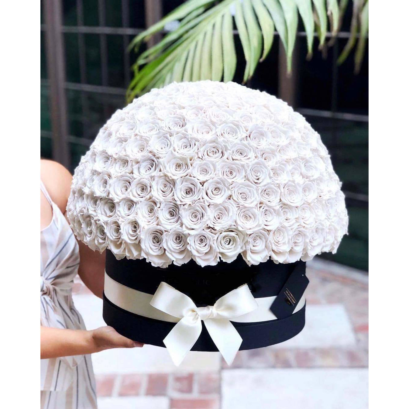 White Roses That Last A Year (Dome) - Deluxe Rose Box - Palatial Petals