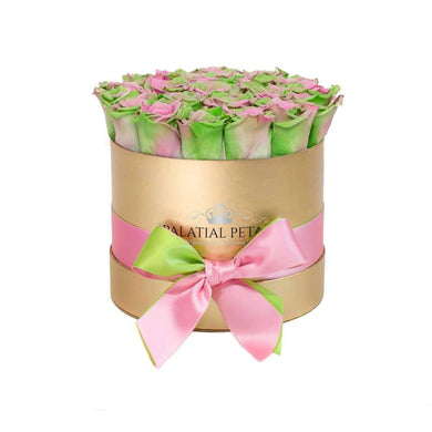 Tropical Roses That Last A Year - Classic Rose Box - Palatial Petals