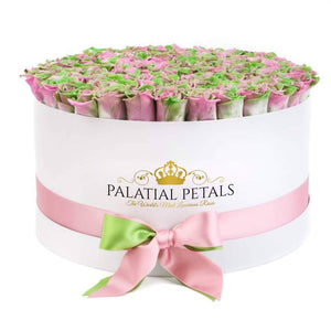 Tropical Roses That Last A Year - Deluxe Rose Box - Palatial Petals