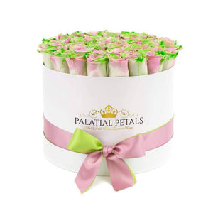 Tropical Roses That Last A Year - Grande Rose Box - Palatial Petals