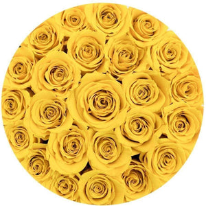 Yellow Roses That Last A Year - Classic Rose Box - Palatial Petals