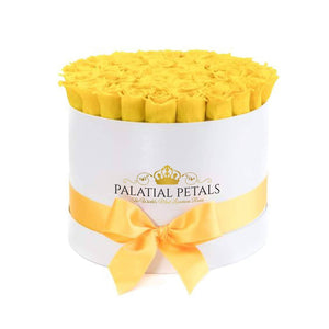 Yellow Roses That Last A Year - Large Rose Box - Palatial Petals