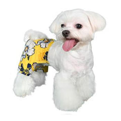 Aruba Dog Swim Trunk - Yellow
