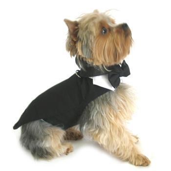 Black Dog Harness Tuxedo w/ Tails, Bow Tie and Cotton Collar