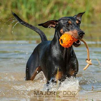 Swimming Eddie Dog Toy by Major Dog