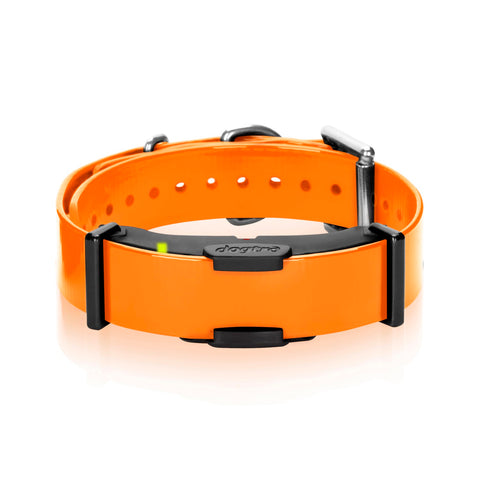 Dogtra ARC Additional Receiver Collar Orange