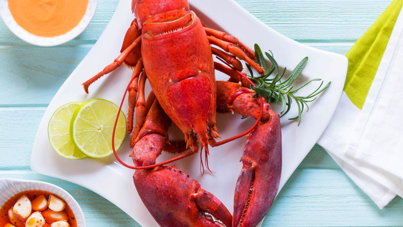 How To Cook Live Maine Lobster at Home