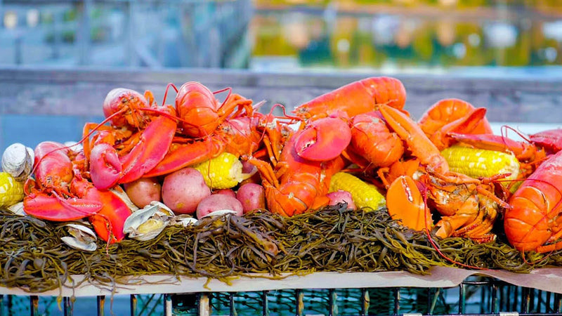 How to Have a Lobster Boil at Home