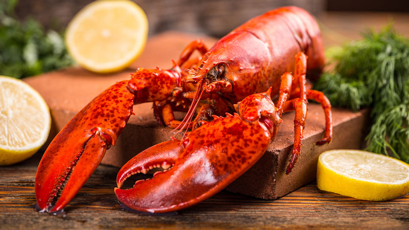 How To Make Lobster Stock at Home