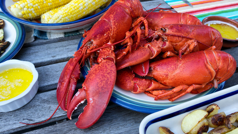 Spotlight: The Original Maine Lobster Dinner