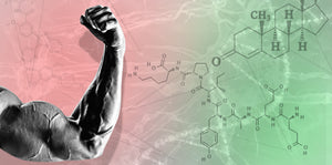 11 ESSENTIAL Foods Proven to SKYROCKET your Testosterone and Growth Hormone!