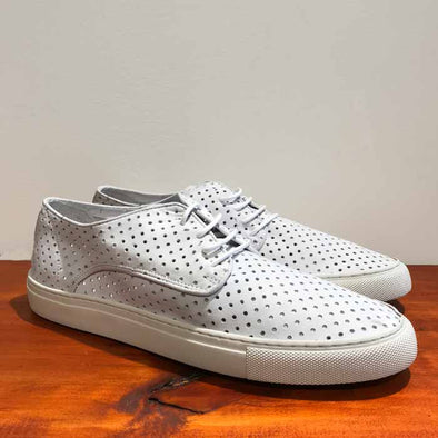 Coast Perforated Sneaker - White - Gingers & Providence