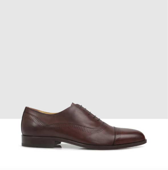 Hansfield Oxford Brown