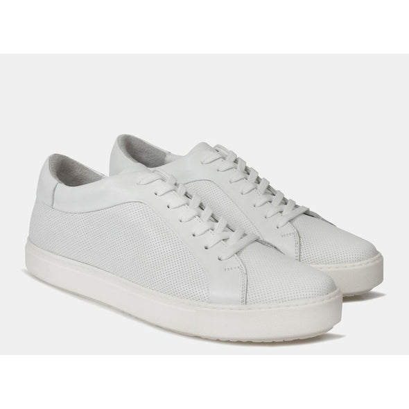 Seth Leather Sneaker White