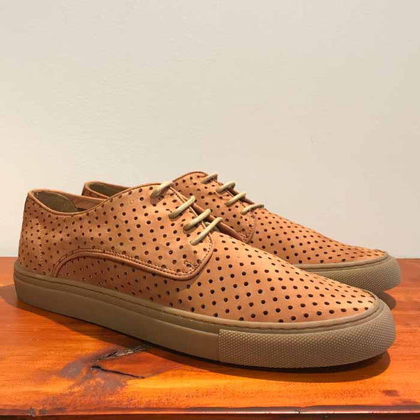 Coast Perforated Sneaker - Tan - Gingers & Providence