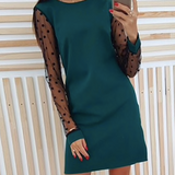 Lace Sleeve Party Dress